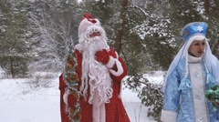 Ukranian Santa Claus in the wood  Stock Footage