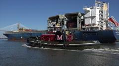 tug guides star isfjord ship to port of savannah, river, ga, usa - stock footage