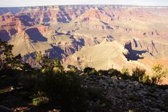 afternoon light grand canyon - stock photo