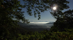 sun shines through trees from blue ridge parkway road, asheville, NC, USA - stock footage