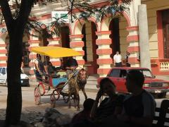 Horse carriage, passes in B/G in park in Havana, Cuba Stock Footage