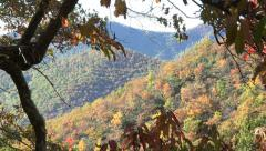 zoom into view of mountains in the fall from blue ridge parkway - stock footage