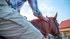 Man patting the horse on sunny day - stock footage