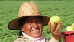 Mexican, Latina woman farm worker show tomato to camera, smiling Arkistovideo
