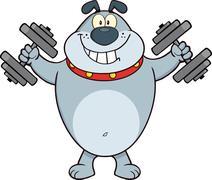 Smiling Gray Bulldog Cartoon Mascot Character Training With Dumbbells Piirros