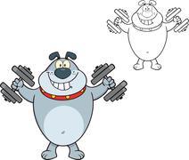 Smiling Gray Bulldog Cartoon Character Training With Dumbbells Piirros