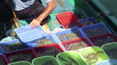 Sai kung hong Kong selling fresh fish from boat Stock Footage