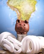 brown piggy and lightbulbs - stock photo