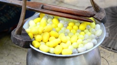 Draw the silk from cocoons boiling Stock Footage
