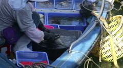 Woman de-scales fish on boat at Sai kung Hong Kong Stock Footage