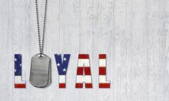 military dog tags - stock illustration