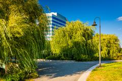 trees and a modern building seen at north point park in boston, massachusetts - stock photo
