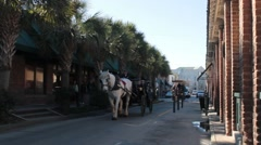 Horse carriages walking through alleyway with tourists Stock Footage