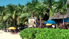 Jamaica Montego Bay Caribbean Sea 029 much palm trees at Doctor's Cave Beach Stock Footage