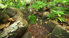 Closeup hiking legs between stones Stock Footage