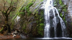 Waterfall and Nature Arkistovideo