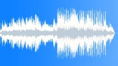 Rainforest (No Vocal) - stock music