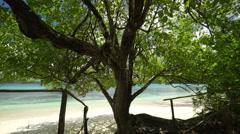 Shady tree on beach Stock Footage
