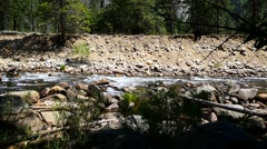 Yosemite National Park USA Spring with rock and trees Stock Footage