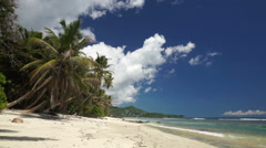 Palmtrees on coral sand beach Stock Footage
