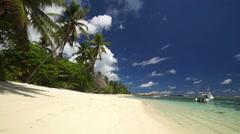 Palmtree beach tropical lagoon Stock Footage