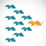 Vector image of an goldfish showing leader individuality success. leadership Stock Illustration