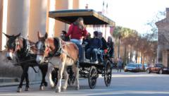 Horse carriage carrying tourists around historical sights in charleston sc Stock Footage