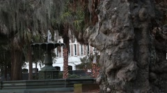 Historic Water Fountain Surrounded by Palm Trees, Moss, and Passing Cars in  Cha Stock Footage