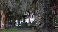 Historic Water Fountain Surrounded by Palm Trees,, Moss, and Passing Cars Stock Footage