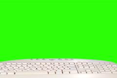 4K. Grass grows from a computer keyboard green screen. Ultra HD, (Triticum L.),  - stock footage