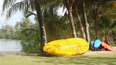 kayak leaning against coconut palms on the seashore - stock footage