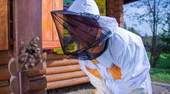 Child bee keeper is checking the bees on the bees farm Stock Footage