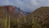 Stock Video Footage of 4K Snow Drift Light Time Lapse Arizona Cactus Landscape