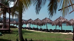 Jamaica Montego Bay Caribbean Sea 046 Seawind Beach Club palm trees & sunshades - stock footage