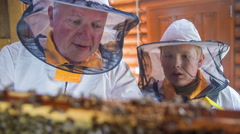 Granddad teaching the grandson about the bees  - stock footage