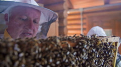 Granddad is checking on the bees while grandson is smoking up the hive - stock footage