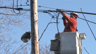 Stock Video Footage of Electrician Working On Power Lines