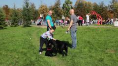 Child and two man with black Labrador Retriever at the international dog show. - stock footage