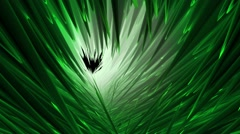 Abstract background in green color - stock footage