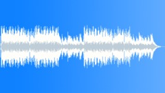 Funky Bayou Blues - stock music