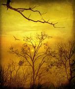 Vintage rural landscape in evening - stock illustration