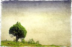 Stock Illustration of Green field and pair of trees heart-shaped