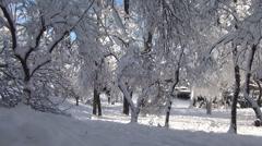 HD. POV. Walking on a snowed path. Beautiful mountain landscape. Stock Footage