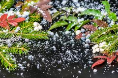 Christmas card of evergreen branches and red berry with snow, closeup Stock Photos