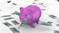 Money falling near the Piggy Bank - stock footage