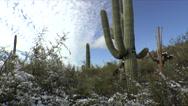 Stock Video Footage of Arizona Desert Snow Fall Time Lapse