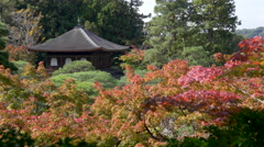 Fall Color at Ginkakuji in Kyoto, Japan Stock Footage
