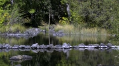 Pit River Native American Fish Traps, Ahjumawi Lave Springs SP Stock Footage