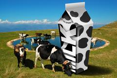 Stock Illustration of cows grazing - milk packaging