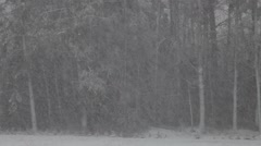 Winter heavy snowing in snowstorm Stock Footage